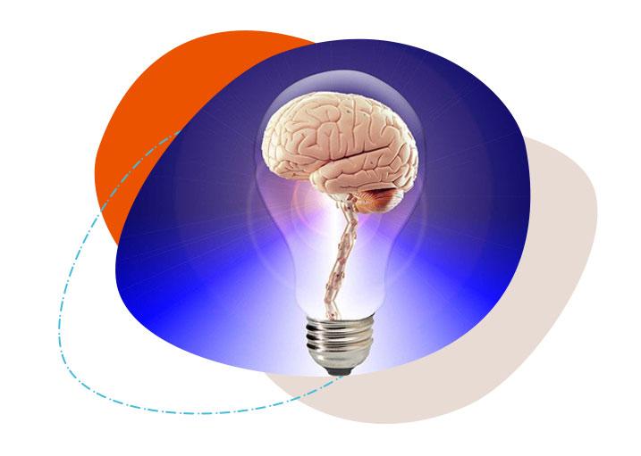 Brainywood